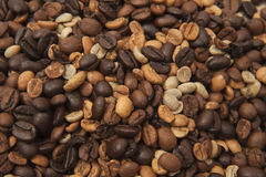 Coffee beans close-up Royalty Free Stock Photos