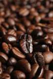 Coffee beans close up Royalty Free Stock Images