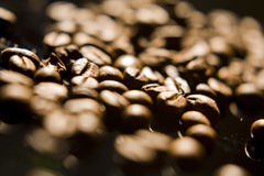 Coffee beans, close-up Royalty Free Stock Photography