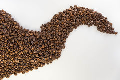 Coffee beans. Close up of coffee beans stock photos
