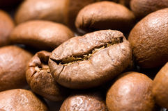 Coffee beans close-up Stock Photos