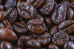Coffee beans close up background Royalty Free Stock Images