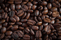 Coffee beans. close up for background and texture Royalty Free Stock Images