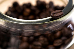 Coffee beans. Close up of coffee bean Royalty Free Stock Image