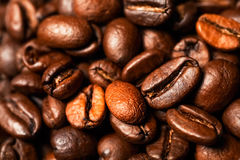 Coffee beans, close-up, black background Royalty Free Stock Photos