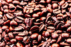 Coffee beans, close-up of coffee beans for background and textur Royalty Free Stock Photos