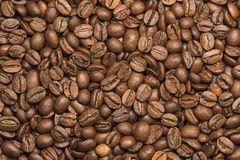 Coffee beans close up. An equal layer Royalty Free Stock Image