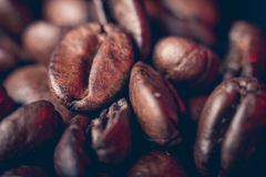 Coffee beans close up. A few coffee beans background, macrophtography Stock Images