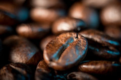 Coffee beans close up. A few coffee beans background, macrophtography Stock Photos