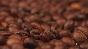 Coffee beans. Close-up. Focus in. Focus out. stock footage