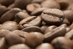 Coffee beans. Close up image of coffee beans stock photography