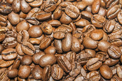 Coffee beans. Close up image of some coffee beans Stock Photography