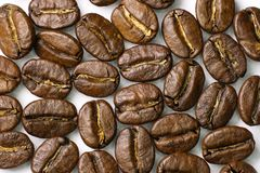 Coffee beans close-up. Macro. Wood background Royalty Free Stock Photography