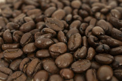 Coffee: Beans Royalty Free Stock Photo