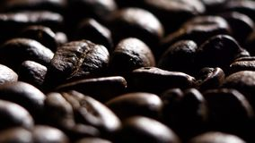 Coffee beans. Close up. Rotating. Backlight stock footage