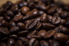 Coffee beans. Close up shot of coffee beans Stock Image