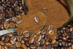 Coffee beans close up. Spicy Stock Image