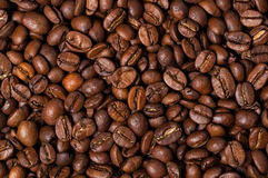Coffee beans. Close up. Stock Images