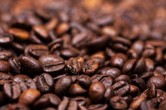 Coffee beans close-up. Texture Royalty Free Stock Photography