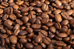 Coffee beans close up Royalty Free Stock Image