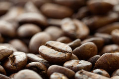Coffee beans closeup. Ð¡offee beans close-up pictures and blurred background stock photography