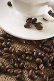 Coffee beans closeup. Closeup of coffee beans around cup of coffee Royalty Free Stock Images