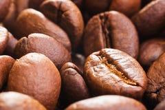 Coffee beans closeup Stock Photos