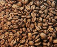 Coffee beans closeup Royalty Free Stock Images