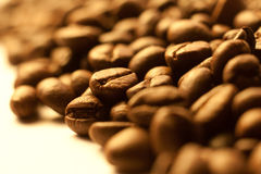 Coffee beans closeup background Stock Images
