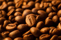 Coffee beans closeup background Stock Image