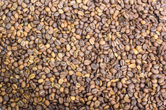 Coffee beans closeup background Royalty Free Stock Photography