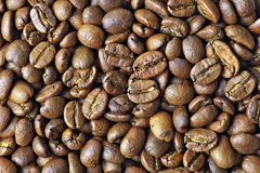 Coffee beans closeup background Royalty Free Stock Image