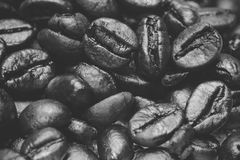 Coffee beans closeup in black and white. Coffee beans closeup treated with black and white retro filters Stock Images