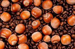 Coffee beans. Closeup of coffee beans and filberts - top view Stock Image