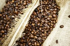 Coffee Beans Closeup Stock Image