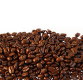 Coffee beans. Closeup of coffee beans on plain background. Copy space Stock Photography