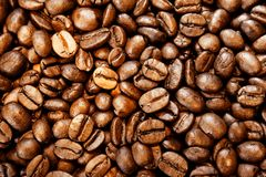 Coffee beans. Closeup of roasted coffee beans Stock Photography