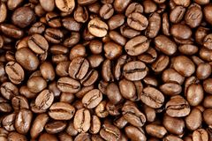 Coffee beans. Closeup of roasted coffee beans Stock Image