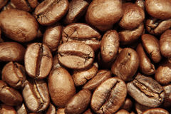 Coffee beans. Closeup of roasted coffee beans Royalty Free Stock Photo
