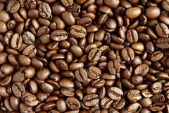 Coffee beans. Closeup of roasted coffee beans Stock Images