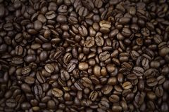 Coffee beans. Closeup of roasted coffee beans Royalty Free Stock Photos