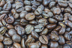 Coffee beans. Closeup coffee beans textures background Stock Images