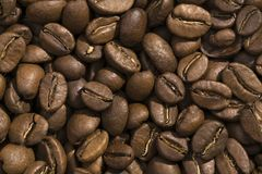 Coffee beans. Closeup view and pattern of some coffee beans Stock Photos