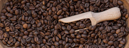 Coffee beans closeup Royalty Free Stock Photos