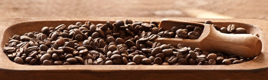 Coffee beans closeup Royalty Free Stock Photos