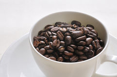 Coffee  beans. Coffee Background. A cup of coffee and beans Background Stock Images