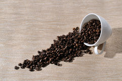 Coffee  beans.Coffee Background. A cup of coffee and beans Background Stock Photography