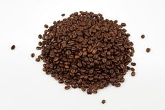 Coffee beans. On plain background Royalty Free Stock Images