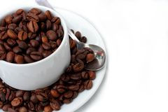 Coffee beans in coffee cup stock image