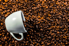 Coffee beans and coffee cup.  Stock Photo